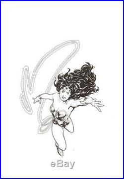 Wonder Woman with Lasso Commission Signed art by Ryan Sook